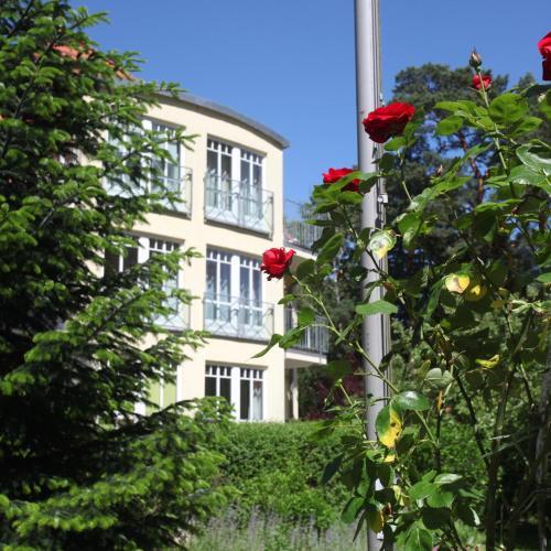 Ferienwohnung Alexandra am Kurfürstensteg