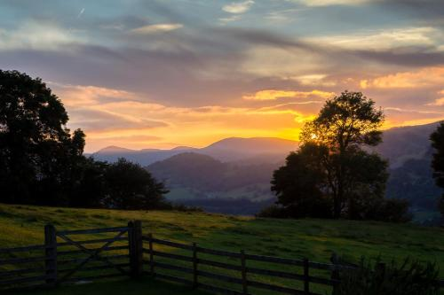 Hillside at Llanerch Farm