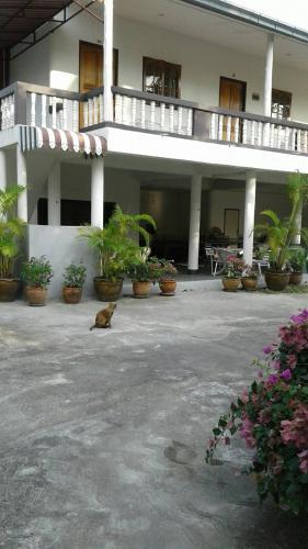 my Palace Inn