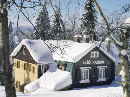 Holiday home Bedrichov - Lisci Farma