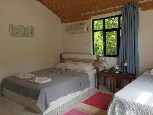 Cirali Friends Pension&Camping