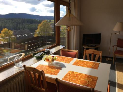 Feldbergblick Appartement