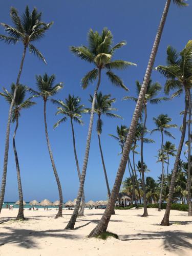 Los Corales Beach Grunwald