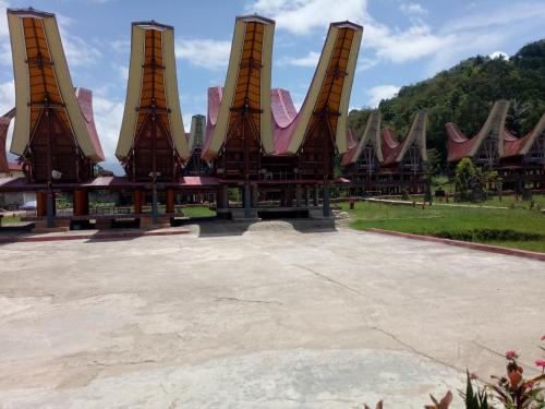 Allota Toraja