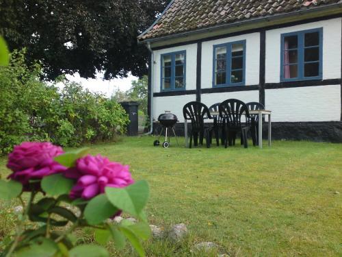 Bøgegården Apartments