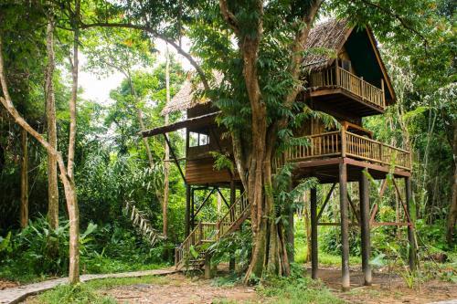 our jungle camp eco resort カオソック 2018年 最新料金