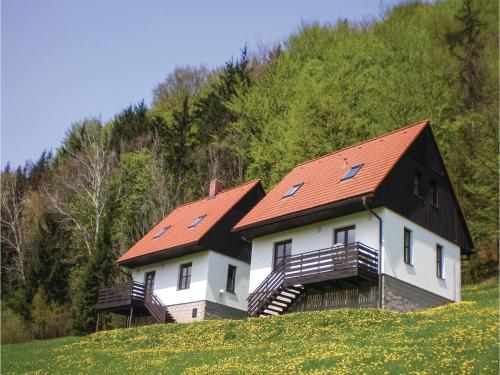Three-Bedroom Holiday Home in Starkov
