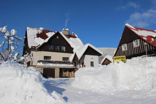 Ski Apartma 564