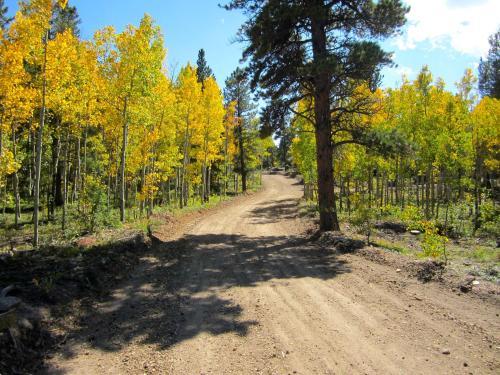 Blue Sky Mountain Ranch