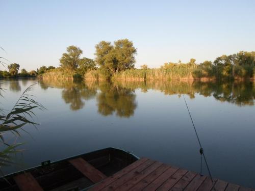 A view of a lake near