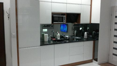 Küche/Küchenzeile in der Unterkunft Apartament Sokołowska