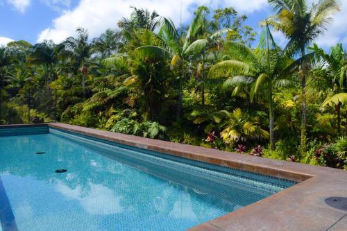 Jake''s Jungle Paradise Home
