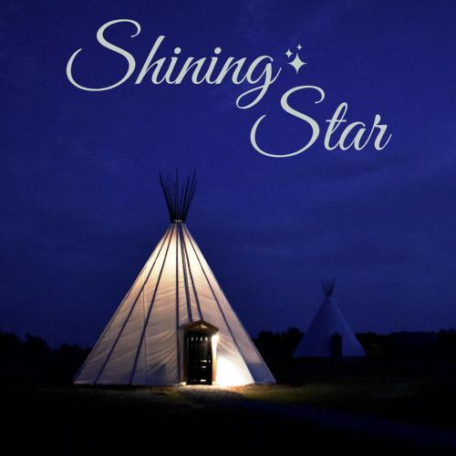 Hotel Shining Star Glamping Tipi, Farmville, USA - Booking com