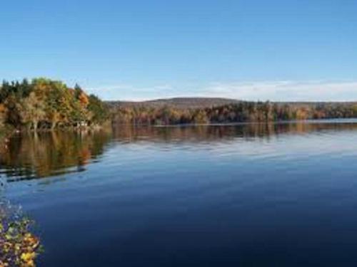Mainstream Pond Getaway