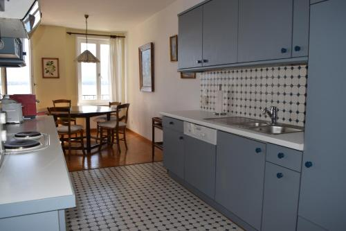 A kitchen or kitchenette at Lake-front spacious flat in Nyon
