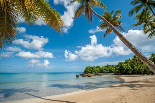 Playa Bonita Beach Residences
