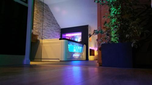 Télévision ou salle de divertissement dans l'établissement JnSpa21