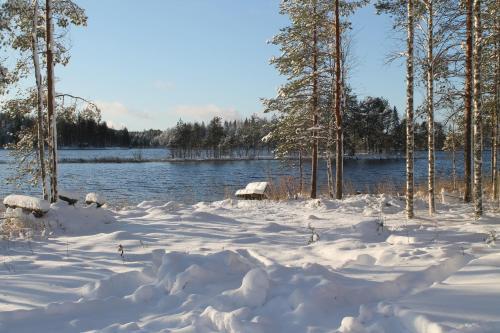 Lake Cottage Koivuniemi