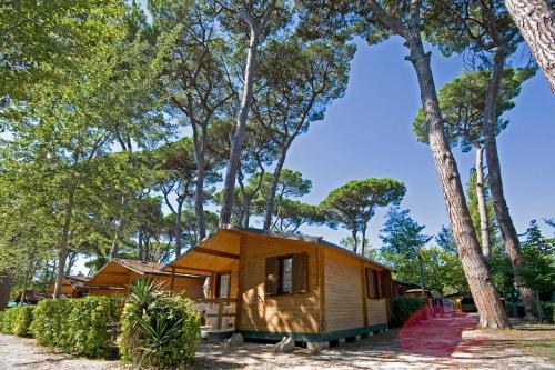Campeggio Boscoverde