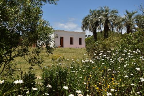 Casa de campo cerca de Cabo Polonio (Uruguay Cabo Polonio ...