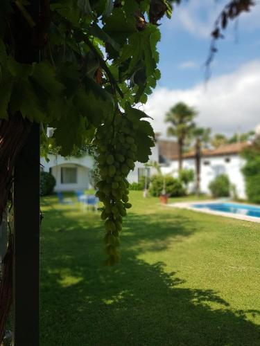 Kolam renang di atau di dekat Hotel Portobelo Mendoza