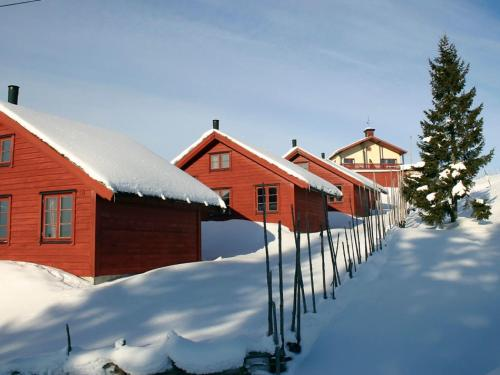 Holiday Home Nordseterveien III during the winter