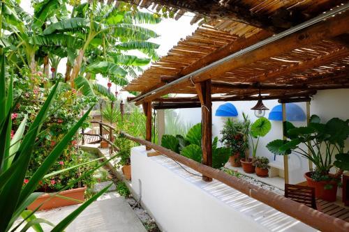 Balcone o terrazza di Blue Dream - Amalfi Coast