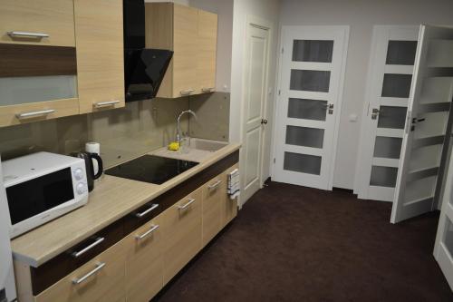 Virtuvė arba virtuvėlė apgyvendinimo įstaigoje Živelina