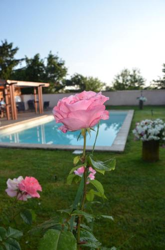The swimming pool at or near les roses de la chapelle