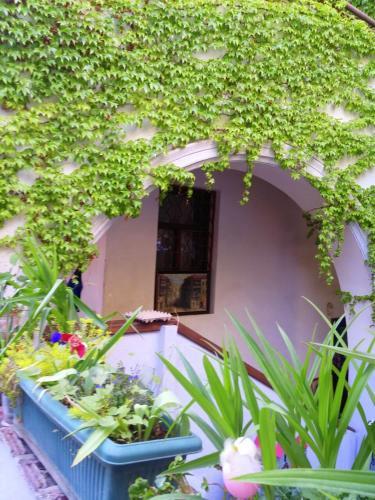 Guest House Marina
