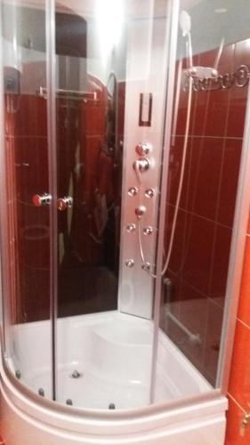 A bathroom at Garsoniera Ana