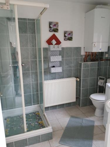 Salle de bains dans l'établissement 1 rue des romains studio meublé clauss