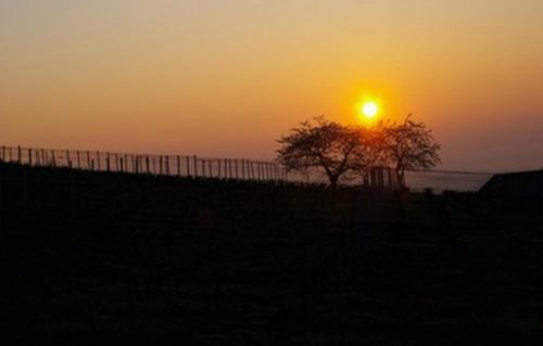 Sončni vzhod oz. zahod, fotografiran iz počitniške hiške oz. okolice