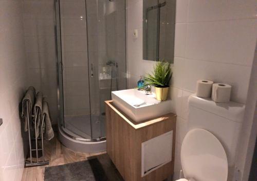 A bathroom at Vinolia Apartment's Budapest
