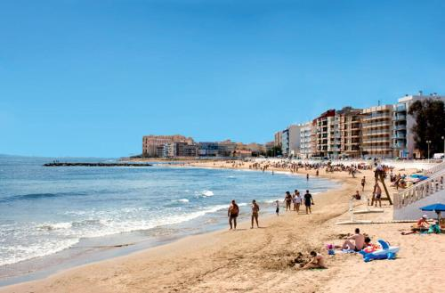 Karta Fran Alicante Till Torrevieja.Modern Studio Flat Torrevieja Alicante Torevjecha Atnaujintos
