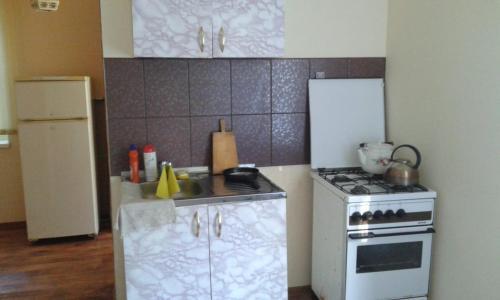 Кухня или мини-кухня в Дом для гостей