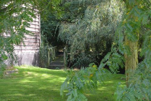 A garden outside Rookyards