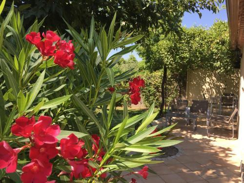 Jardin de l'établissement Gite Chez Un Producteur de Fruits.