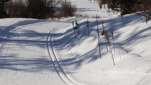 L'établissement Dvacances Résidence les tavaillons en hiver