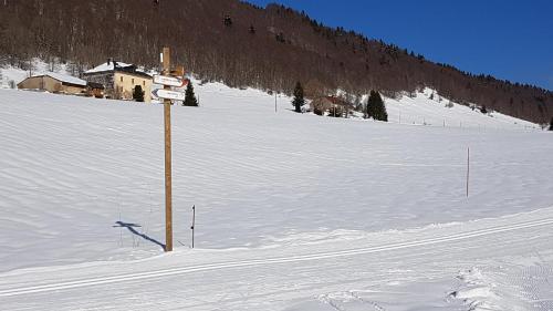 Ski au sein de l'appartement ou à proximité
