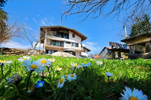 Apartments Strmac
