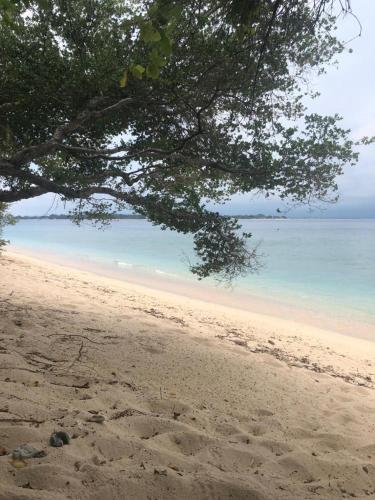 Biru Meno Beach Bungalows Indonesien Gili Meno Booking Com