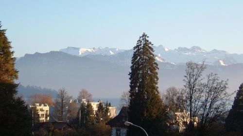 冬のBrunnhaldeの様子
