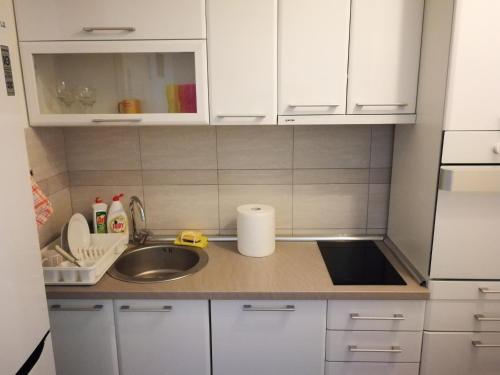 Kuhinja ili čajna kuhinja u objektu Nirvana SPA Center
