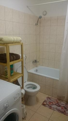 A bathroom at Peter's appartement