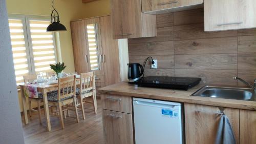 A kitchen or kitchenette at Domki pod Derkaczem