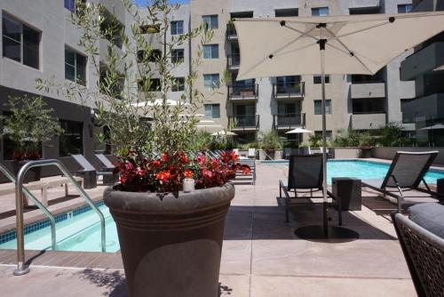 The swimming pool at or near The best entire apartments in Hollywood