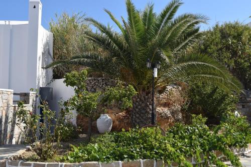 A garden outside Paraporti