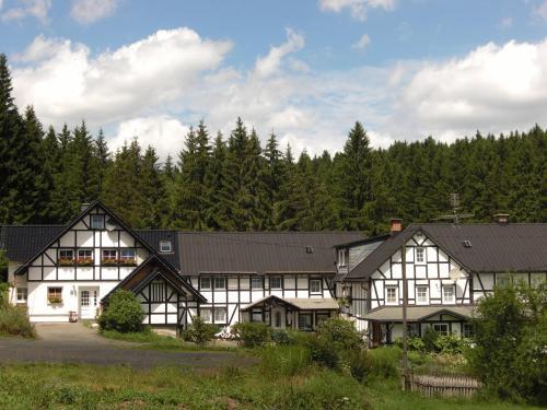 pension landhaus zum rothaarsteig (deutschland erndtebrück,