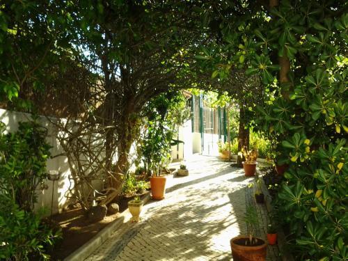 A garden outside Casa do Mar